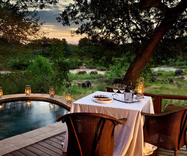 the-best-of-the-greater-kruger-outside-the-sabi-sands