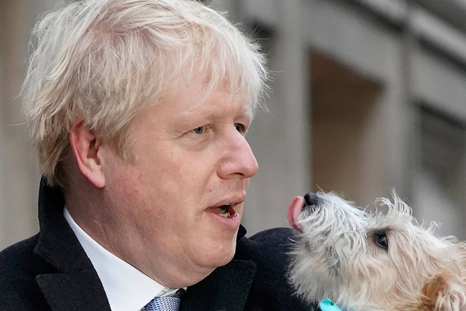 pm-reveals-the-amorous-inclinations-of-dilyn-the-no-10-dog