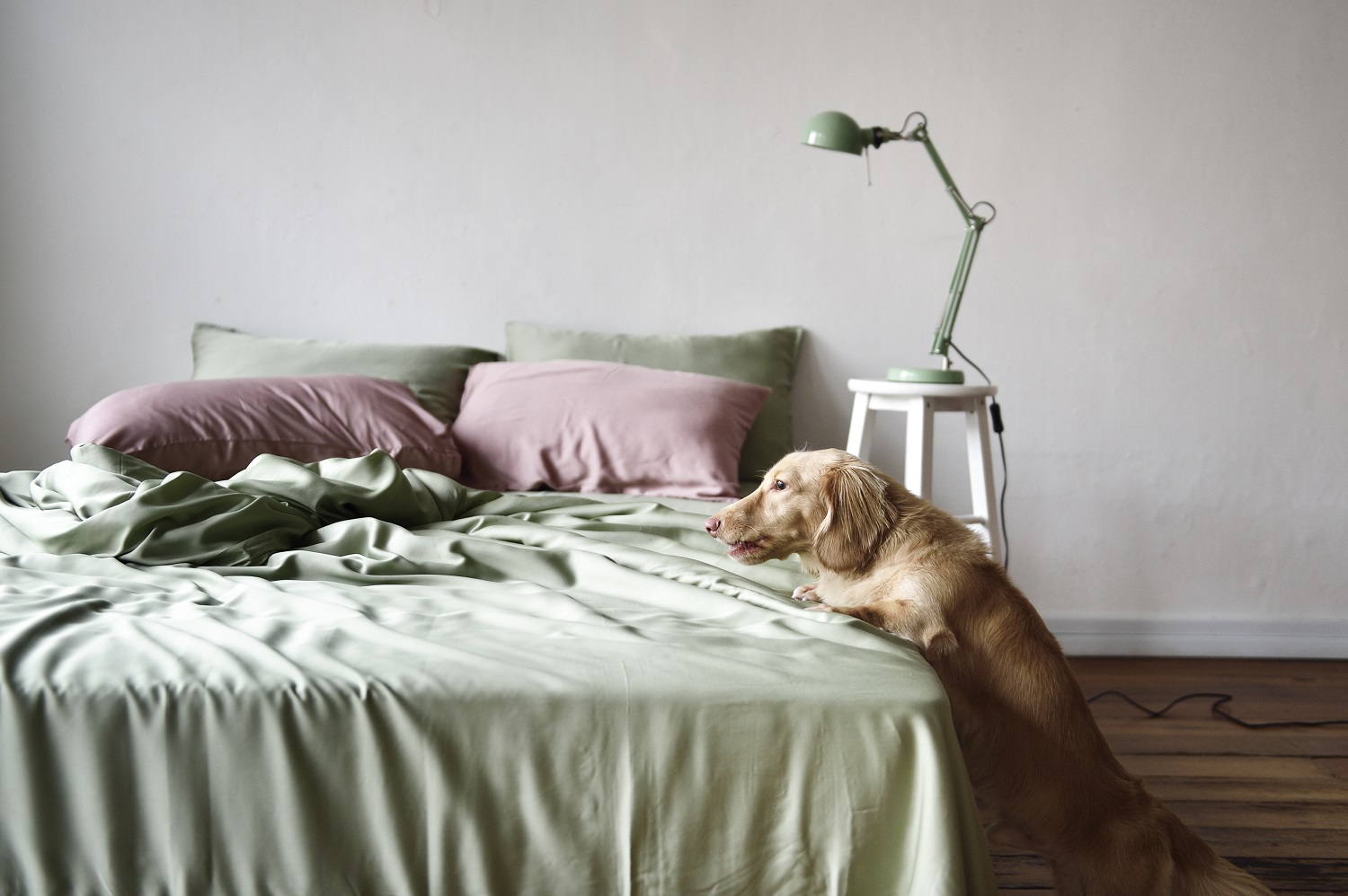 protect-the-environment-while-you-sleep-with-sunday-bedding-sustainable-bed-linens
